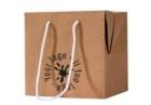 bag-box-23x23x23