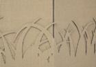 espositore-da-terra-esagonale-onda-scoperta-c