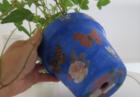 Fig. 4 - vaso con velcro