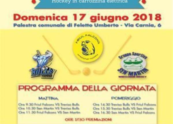 2018_locandina_Friul_Falcons_Cup_03